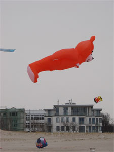 Drachen roter Bär